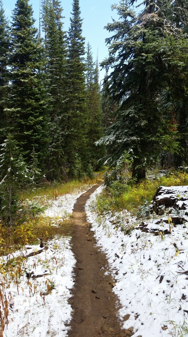 Running through a fresh September snow. (at least it was an easy trail)
